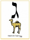 Gimel or Camel